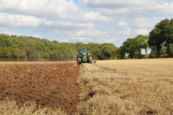 The Changing Face of Farming Policy – what to expect in the 2020s