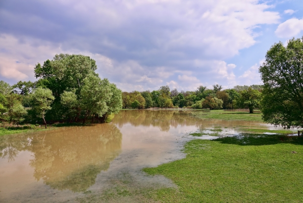 Water, water everywhere: the dangers of flooding