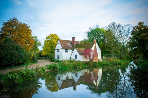 What does a surveyor look out for when conducting a RICS home survey?
