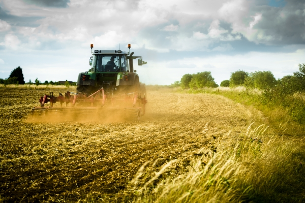 Why should farmers be optimistic about their future following the phasing out of the Basic Payment Scheme?