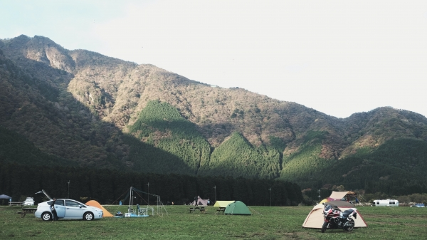 Wide open space available? Consider camping as a means of diversifying